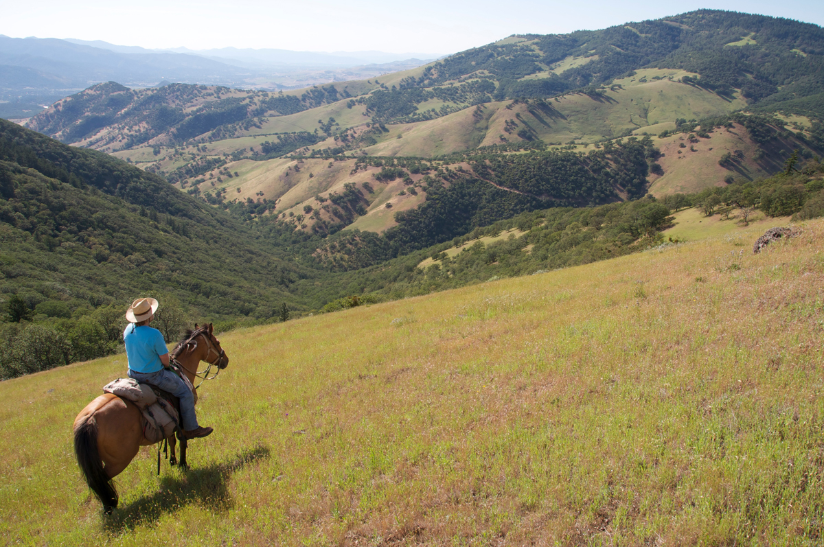Horseback rider looking toward Tom Spring Mtn
